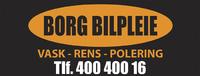Borg Bilpleie