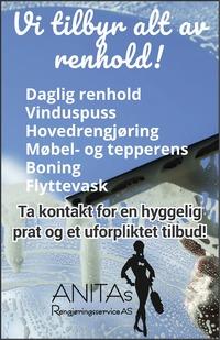 Annonse i Romerikes Blad - Hjem og Interiør