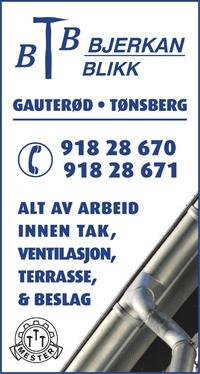 Annonse i Tønsbergs Blad - Bygg og fagfolk