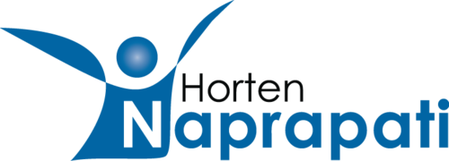 Horten Naprapati