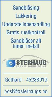 Annonse i Hamar Dagblad