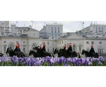 Heldagstur i London - 2 netter på 3* hotell og sightseeing tur