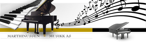 Marthinussen Musikk AS