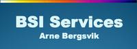 Bergsvik Skip & Industri Services