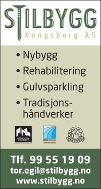 Annonse på trykk i Laagendalsposten - Bygg og fagfolk