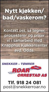 Annonse i Hardanger Folkeblad - Bygg og fagfolk