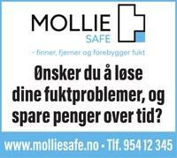 Annonse i Romerikes Blad - Bygg og fagfolk - Øvre